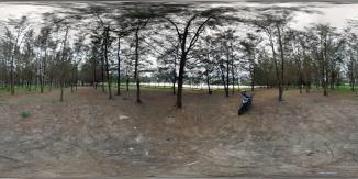 Kawasan Pohon Lamaru